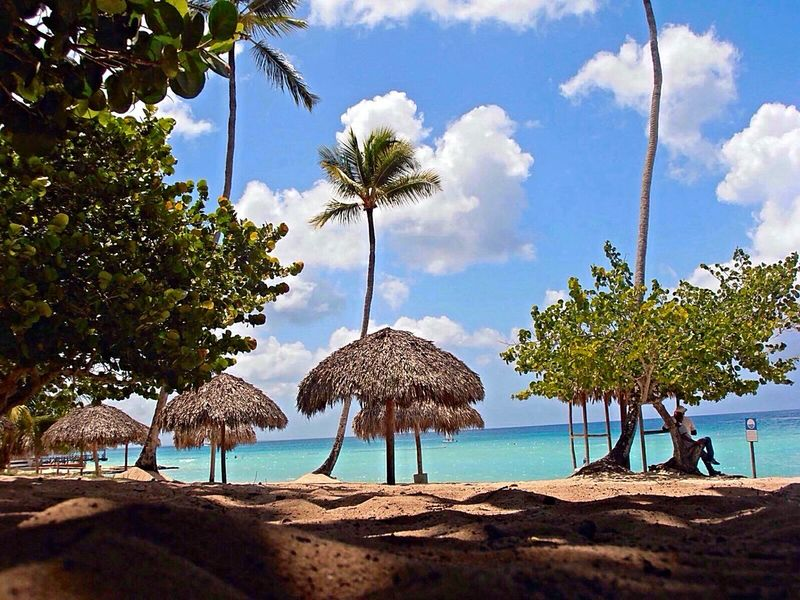 Beach Beauty In Nature Blue Cloud Cloud - Sky Day Dominicus Beach Nature Playa Dominicus Scenics Sea Seascape Travel Destinations Tree Tropical Climate Vacations