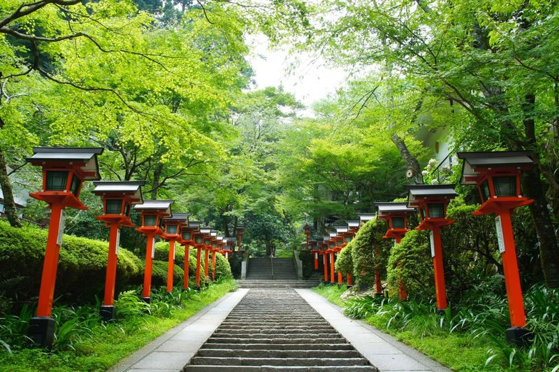 Creative Light And Shadow Kyoto*Japan