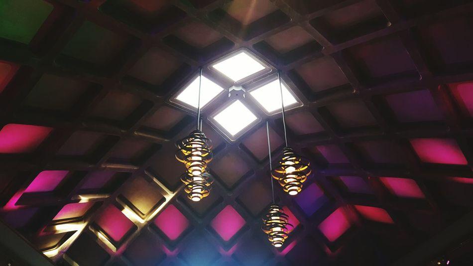 Light And Reflection Botanical Garden Amazing Architecture Low Angle View Indoors  Illuminated Pattern