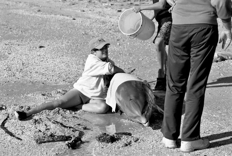 Beach Black&white California Death Dolphin Endangered  Friendship Ill Life Saver People Real People Sea Stranded Water Young Adult