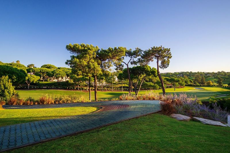 Golfcourse Golf Course Plant Tree Sky Nature Clear Sky Growth Tranquility Beauty In Nature No People Park Grass Scenics - Nature Green Color Tranquil Scene Outdoors Park - Man Made Space Copy Space Footpath Blue