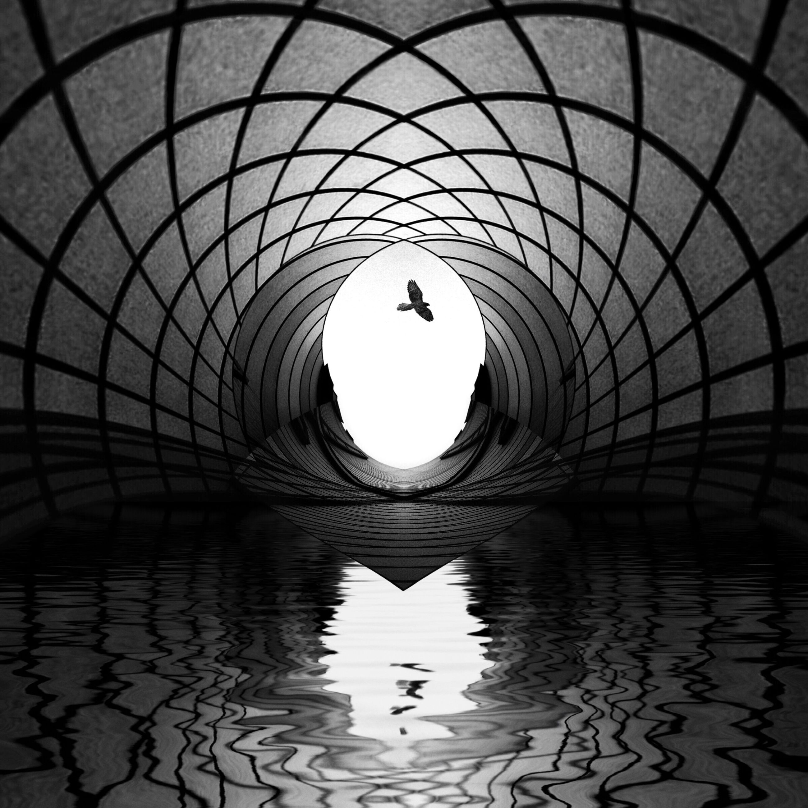 built structure, architecture, arch, circle, water, reflection, indoors, pattern, day, no people, ceiling, geometric shape, waterfront, sky, tunnel, directly below, nature, sunlight, railing