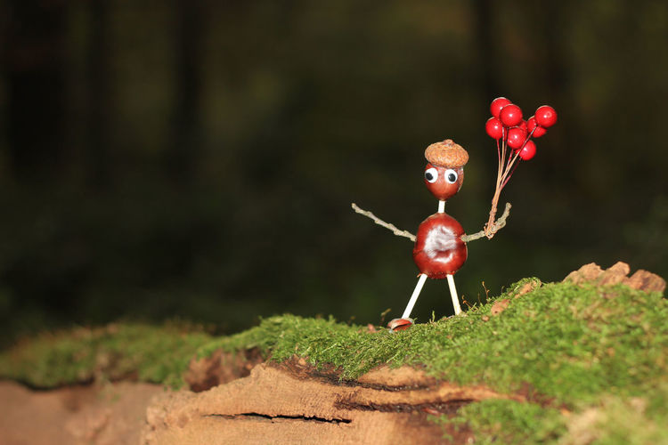 Crafted chestnut figure with balloons Outdoors Balloons Crafted Handicraft Chestnut Chestnutman Wackelaugenfürdiewelt No People Autumn Moss Fall Standing Figure Acorn Wood