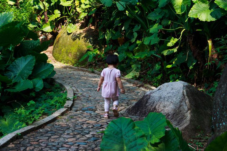 Rear view of girl walking on footpath amidst plants in garden