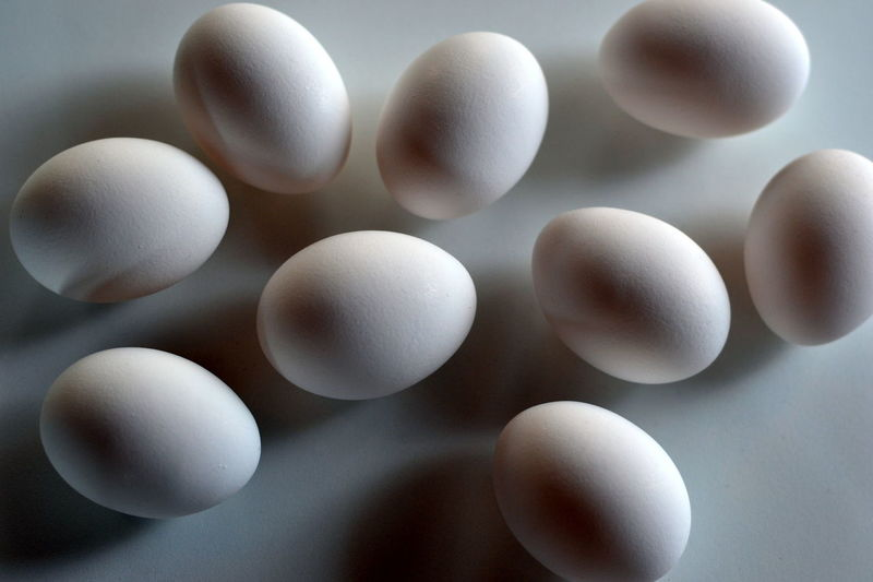 Nine Chicken Eggs; White Eggs Abundance Breakfast Chicken Eggs Circle Close-up Egg Eggs Eggshells Food Full Frame Geometric Shape Group Of Objects Grouping Ingredient My Favorite Breakfast Moment Nature Nine No People Objects Oval Ovals Repetition White Whole Eggs In Shell