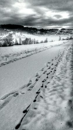 Snowlandscapes Black And White EyeEm Nature Lover Nature_collection Frozen In Time From My Point Of View