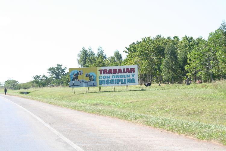 Sign Road Plant Communication Sky Transportation Tree Text Nature Western Script Direction Grass No People Day Copy Space Land Outdoors Field Clear Sky Landscape Cuba Road Politics And Government Socialism