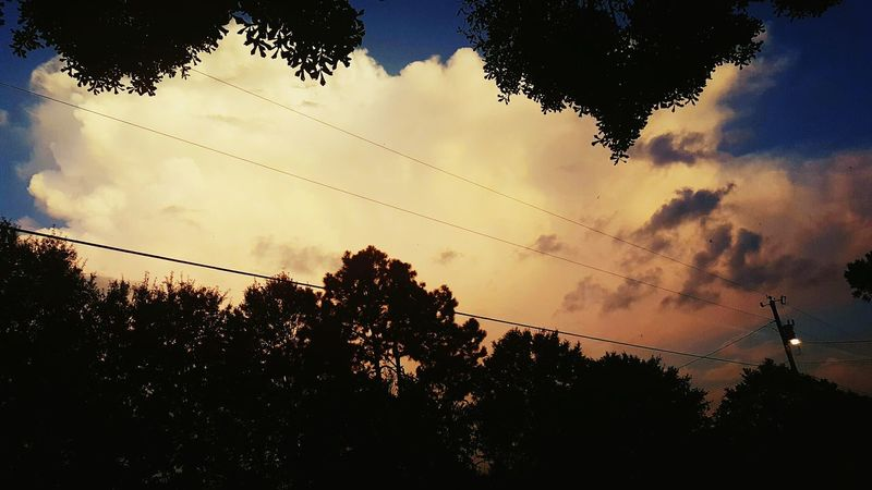 Right here right now ... i notice after the heart shape from the trees above me :) Tranquility Branch Beauty In Nature Outside My Door Cellphone Photography Tree And Sky Louisiana Sunsets Louisianaphotography Sunset_collection Louisiana Skies Beauty In Nature Louisiana Eye Of Ky