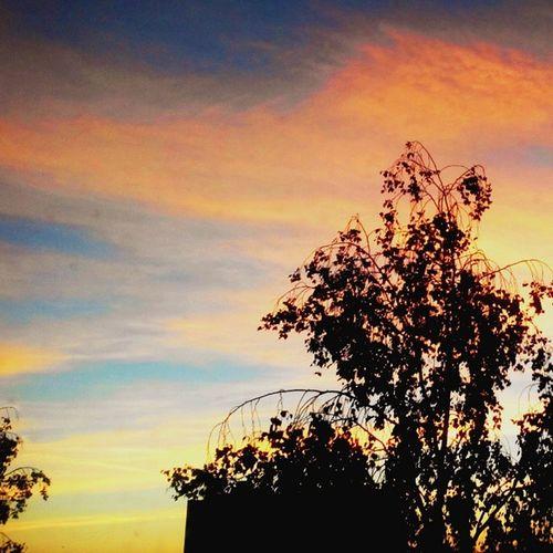 Утро... Рассвет🌇🌞доброеутротатарстан утро рассвет небо skysunsunrisegoodmorning