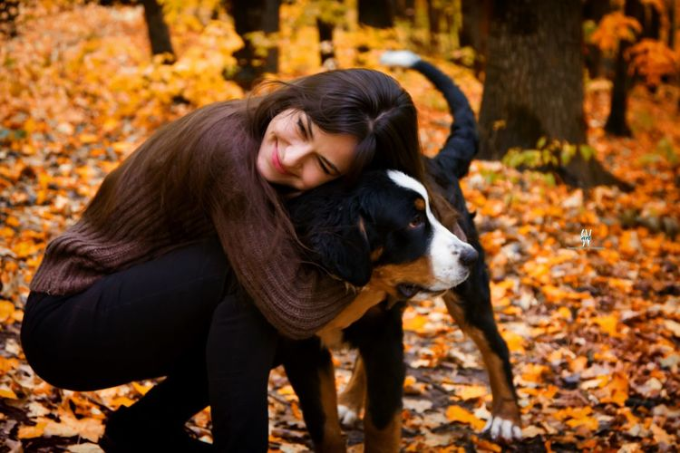 Autumn Animal Leaf Outdoors Long Hair Pets Dog One Animal Adult Day Domestic Animals Mammal Affectionate One Person People Nature Only Women Tree Full Length Friendship