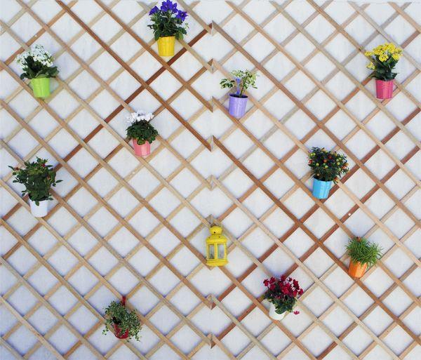 Vase Wood Balcony Close-up Day Decoration Directly Above Flower Freshness Garden Multi Colored No People Plant Springtime Summer Variation White Background