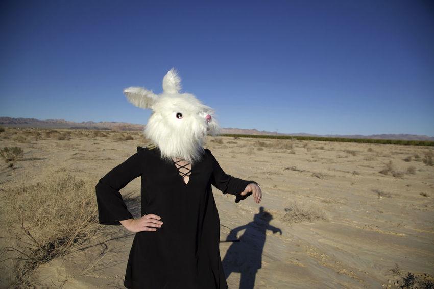 California Clear Sky Desert Easter Easter Ready Landscape Lifestyles Rabbit ❤️ Rabbits