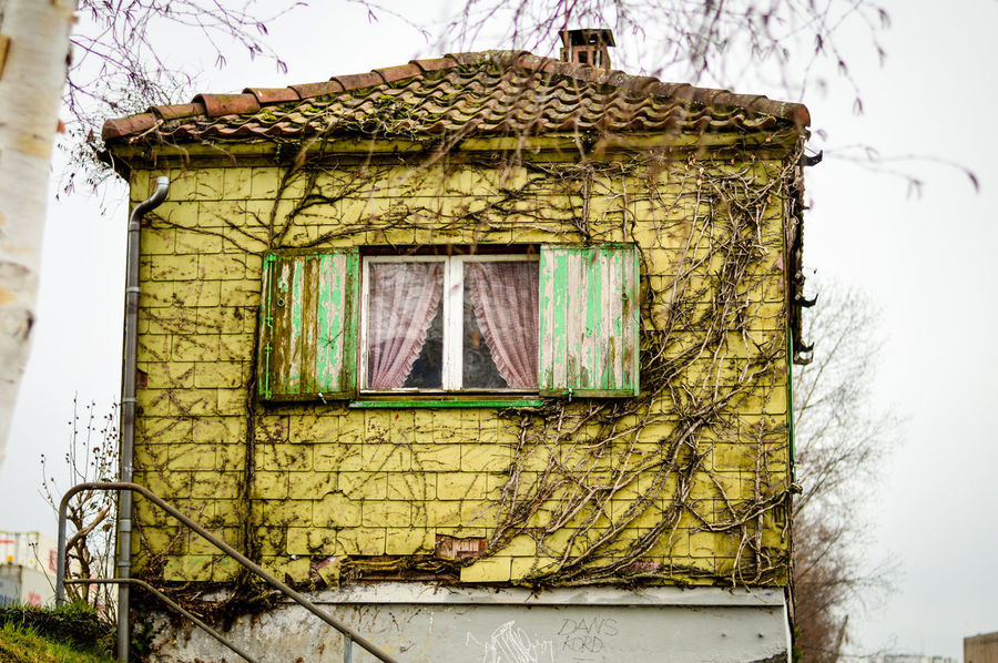 Little funny house along the street Architecture Bare Tree Building Exterior Built Structure Close-up Day Hanging House Little House Low Angle View Nature No People Outdoors Sky Streetphotography Tree Window