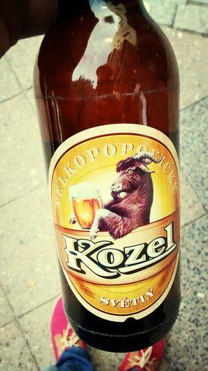 Tasting czech beer. Beer Czech Beer Berlin Bier