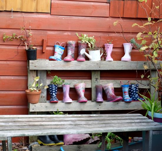 Kids' Wellington Boots Boots Wellies  Wellington Boots Wooden Seat Children's Boots Children's Wellies Children's Wellington Boots Choice Day Gardening Group Of Objects Kids' Boots Kids' Wellies Kids' Wellington Boots Nature No People Outdoors Plant Potted Plant Shelf Shelves Still Life Wall Watering Can Wood - Material