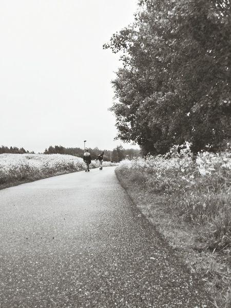 Porsön Summer 2013 Missing Summer