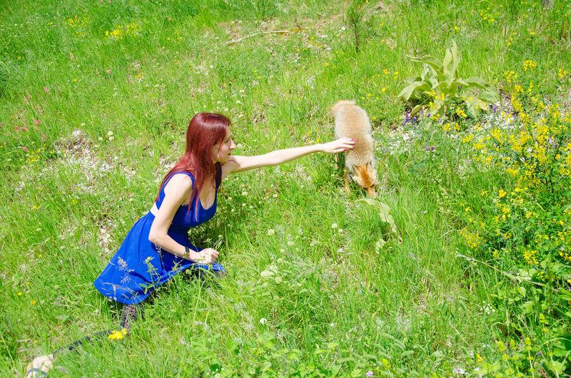 Woman touching fox on field