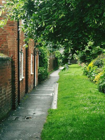 Country Lane Bingham, Notts
