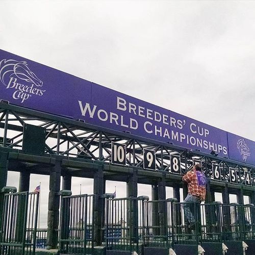 The Breederscup2015 is over had fun Selfie Keeneland Americapharaoh Lexington Fallingleaves Amazing Autumn Thoroughbredracing Kentucky  Fall Selfies Autumnleaves Horserace