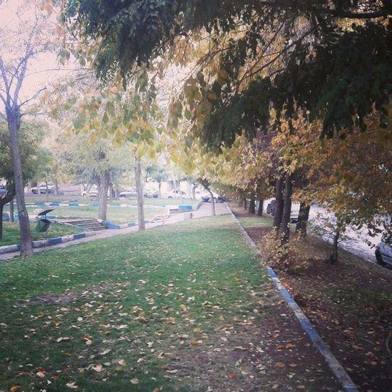باران و  پاییز Iran Hamedan
