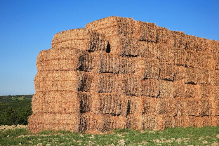 Haystacks stacked up