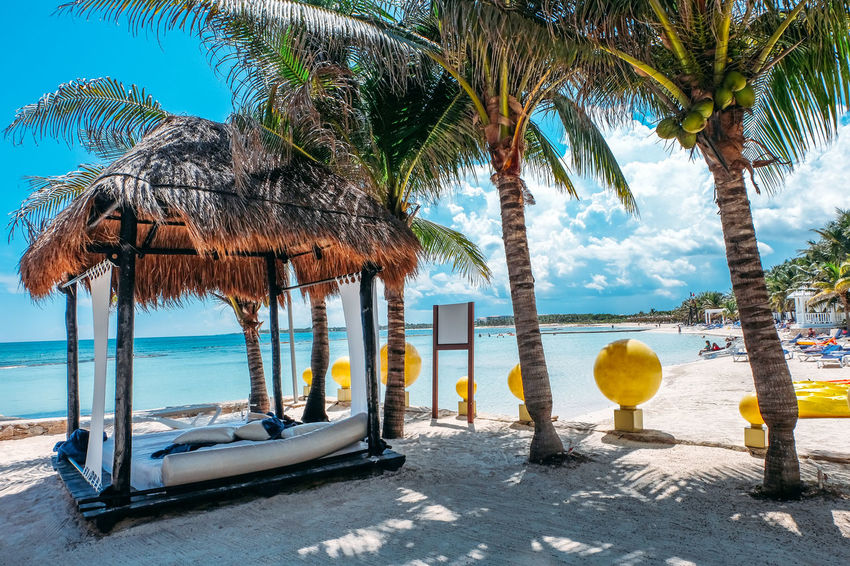 Mexico Beach Beach Bed Beauty In Nature Coconut Palm Tree Day Horizon Over Water Land Nature No People Outdoors Palm Tree Plant Scenics - Nature Sea Sky Thatched Roof Tranquility Tree Tree Trunk Tropical Tropical Climate Trunk Vacation Water