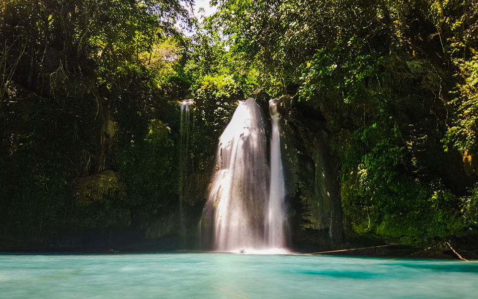 Cebu Beauty In Nature Day Falling Water Flowing Flowing Water Forest Green Color Growth Kawasan Falls Land Long Exposure Motion Nature No People Outdoors Plant Power In Nature Rainforest Scenics - Nature Tree Water Waterfall Waterfront