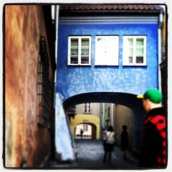 Niebieski Arka Gdynia