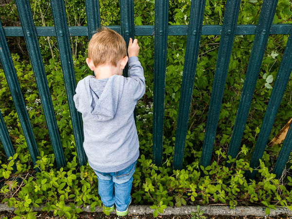 Boy Child Childhood Fence Climbing Casual Clothing Hoodie Blonde Jeans Grass From Behind Kerb Undergrowth Trainers 2-3 Years Grabbing Metal The Portraitist - 2016 EyeEm Awards Real People Trees Painted Outdoors Day Steel Kid