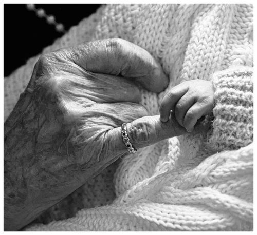 Trust, love Close-up Cropped Day Detail Focus On Foreground Generations, Gnarled, Smooth Great Gran Great Granddaughter Nature Old And Young, Hands Black And White Part Of Selective Focus