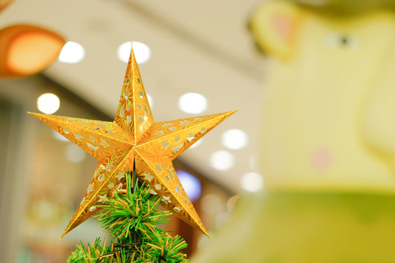 Christmas Star Shape Christmas Decoration Celebration Christmas Tree Christmas Ornament Indoors  Close-up No People Day Star