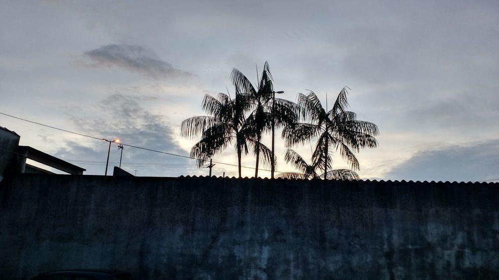 Amanhecer Céu Lindo Lugar Nuvens Coqueiros Céu Escuro Incrivel Raiar Do Sol Sunchine