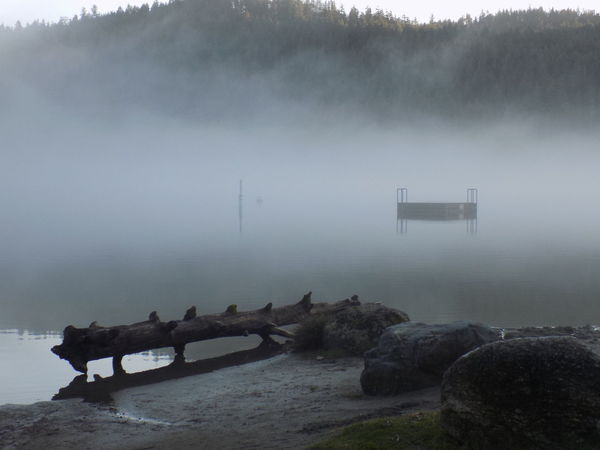 Dock Vancouver Island Canada Lake Beautiful Serenity EyeEm Nature Lover EyeEm Best Shots Foggy Landscape Beachphotography Beach Fog Weather Social Issues Tranquility Outdoors No People Nature Water Day