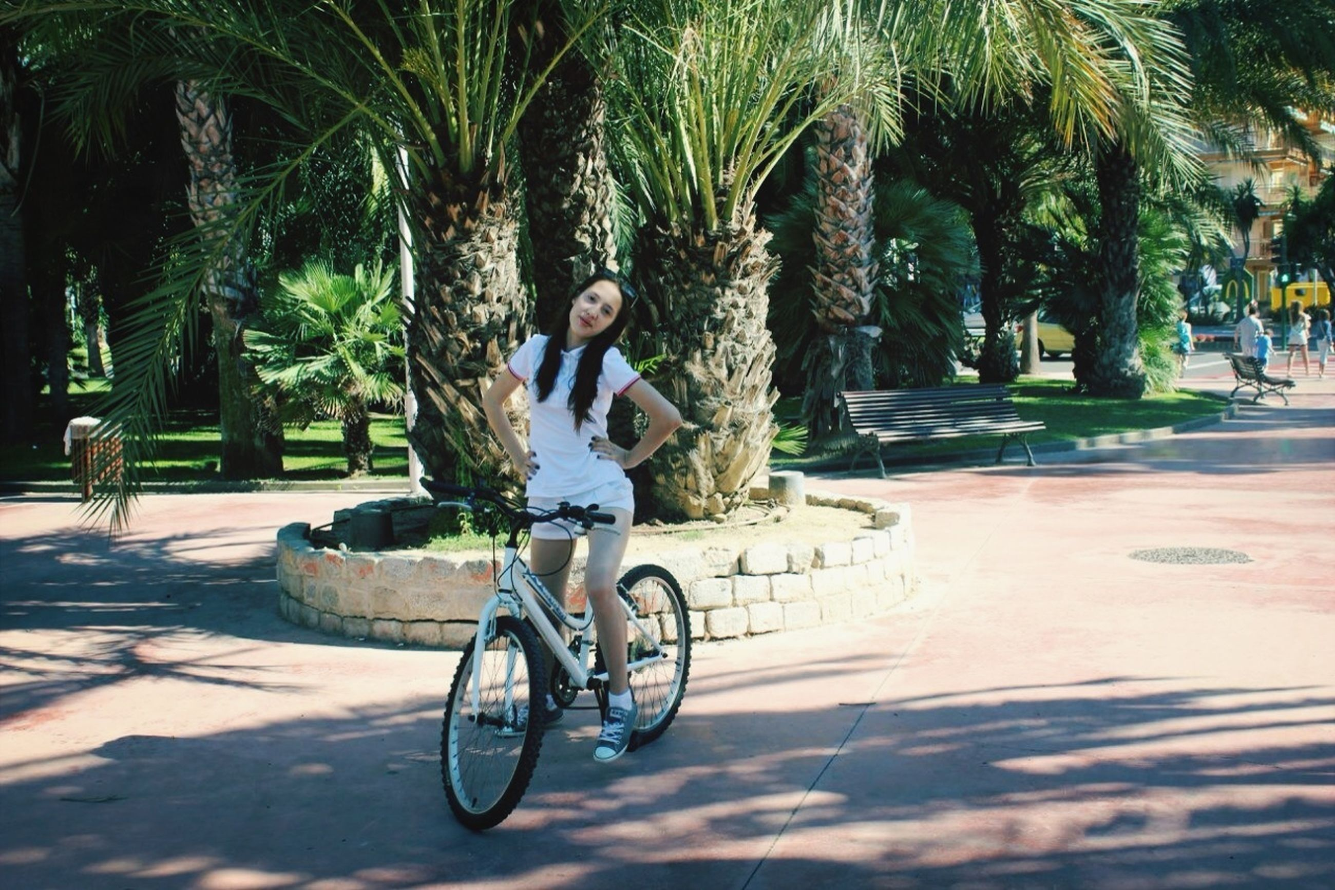 bicycle, tree, transportation, mode of transport, land vehicle, street, riding, lifestyles, full length, leisure activity, road, outdoors, men, stationary, parking, building exterior, sunlight, incidental people