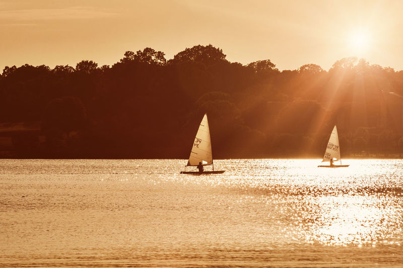 Sailboats on a lake during late evening Adventure Beauty In Nature Day Nature Nautical Vessel Outdoors Sailboat Sailing Scenics Silhouette Sky Sunlight Sunset Transportation Tree Water Waterfront