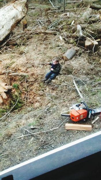 Bubba had fun getting firewood