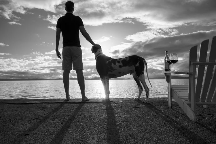 Man and dog by the sea with wine, hand on pets head, monochrome black and white. Domestic Animals Pets Domestic Mammal Animal Themes Animal Sky One Animal Cloud - Sky Dog Full Length Canine Water Vertebrate Real People Standing Nature Sea One Person Pet Owner Wine Lake House  Beach House Luxury Lifestyles Adoption Fleas Ticks Pest Resting Petting Regal Gentlemen Elegant Wealthy Sea Wall Adirondack Chair Silhouette Tasting Harlequin Great Dane