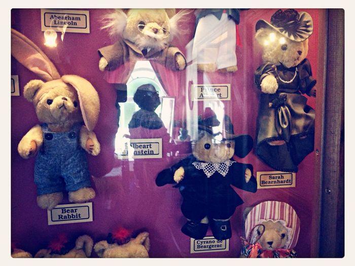 Meet Hucklebeary Finn, St Bearnadette, Che with beAret, Albeart Einstein, Cyrano de Beargerac, Sarah Bearnhardt and Co.