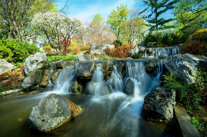 Japan is Vienna and Vienna is Japan. a small Park in Japan Style Bokeh Love Japan Vienna Bokeh Colorful colour of life Park Setagayapark Silent Spring Waterfall