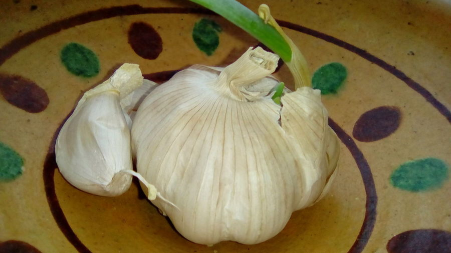 Garlic White Green Vegetables Vegetables Photo Day At The Farm Ornaments Folklore Check This Out EyeEm Gallery DELICIOUS FOOD ♡ Food Nature Harmony Taking Photos Happy