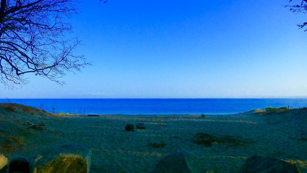 sea, horizon over water, water, beauty in nature, nature, scenics, tranquility, tranquil scene, blue, clear sky, sky, outdoors, no people, day, beach, tree