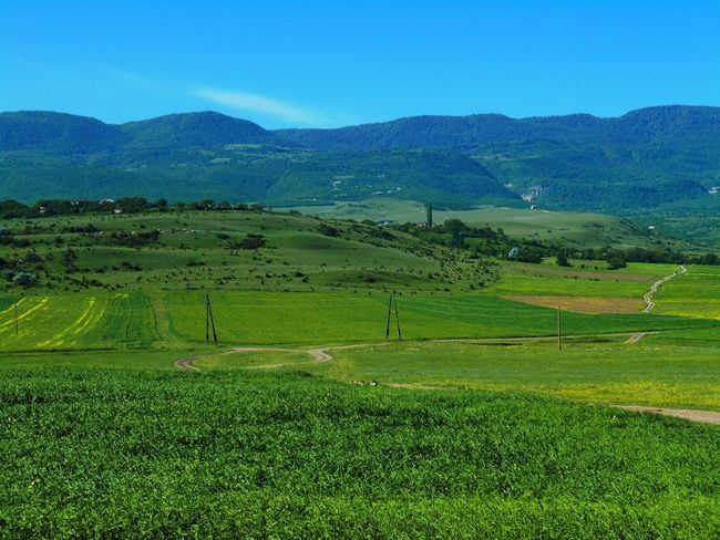 Agriculture Beauty In Nature Day Field Geogia Grass Green Color Growth Landscape Mountain Mountain Range Nature No People Outdoors Rice Paddy Road Rural Scene Scenics Sky Tranquil Scene Tranquility Vilige
