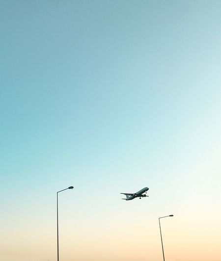 Minimalobsession Minimal Minimalism EyeEmBestPics The Week On EyeEm EyeEm Selects EyeEm Best Shots Flying Copy Space Low Angle View Bird Sunset Clear Sky Silhouette Mid-air Air Vehicle Airplane Sky