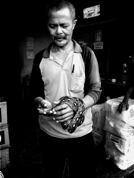 Ordinary day at work Oh My God Snake Crazy Awesome The Week On EyeEm
