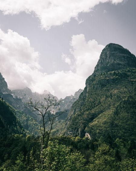 jurassic park Copy Space Dolomites, Italy EyeEm Best Shots EyeEm Nature Lover Natural Beauty Beauty In Nature Dolomiti Forest Italy Landscape Mountain Mountain Range Nature