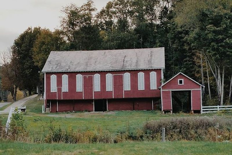 Barn Farm Livestock Ohio Malvern Red