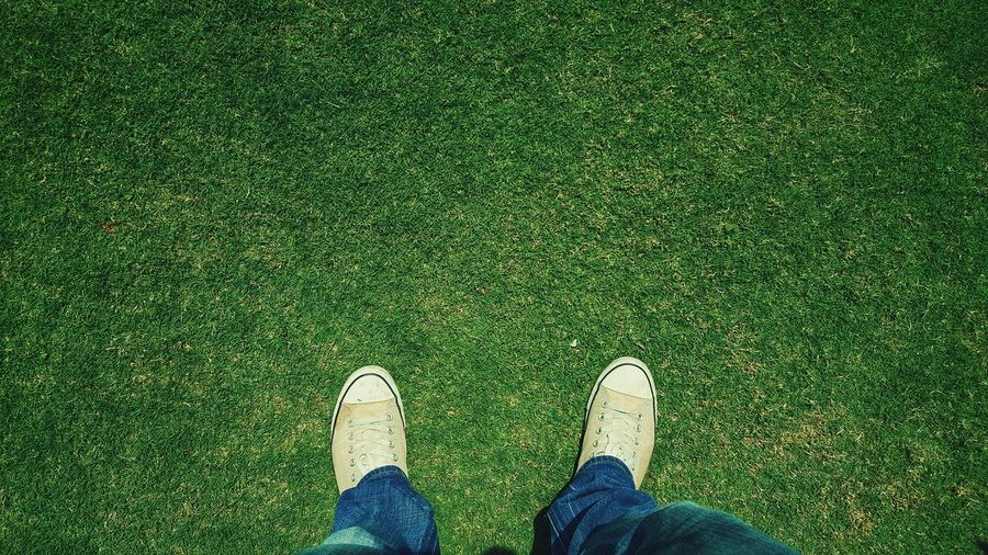 The OO Mission Shoes Looking Down Grass AllStarshoes My Shoes Blue Jeans Human Body Part Feet Legs_only Feetselfie Legsselfie Minimal Simple Photography Human Representation Look Down Grassfield Allstarconverse Converse All Star Converse
