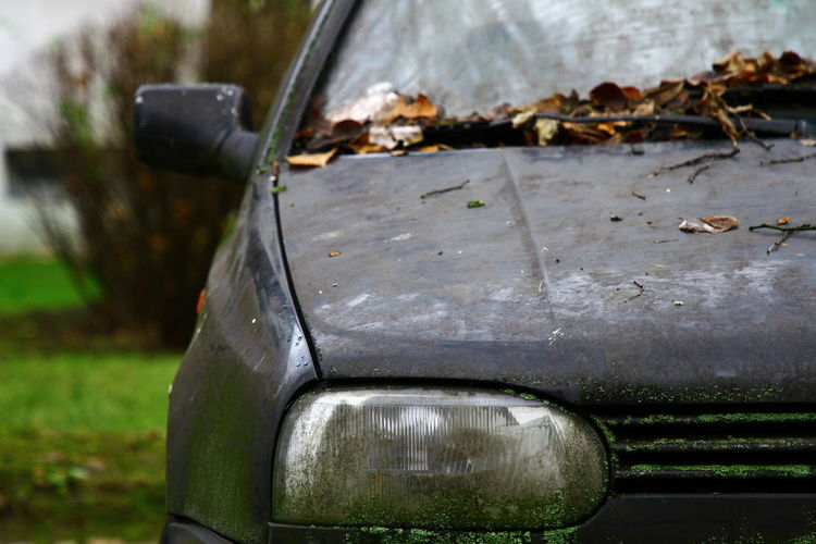 Autumn Autumn Leaves Light Rust VW Vw Golf MK3 Wind Shield Car Car Wash Close-up Day Front Glass Car Glass - Material Grass Land Vehicle Mode Of Transport Moss No People Outdoors Reflection Rusty Stationary Transportation Water Wet