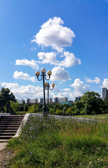Cloud - Sky Sky Outdoors Day No People Flower City Life City Uneven Lights Street Lights Moscow Russia Chicory Blue Flowers Москва фонари цикорий Nature Landscape Plant Cumulus Cloud Summer Flowers Cityscape
