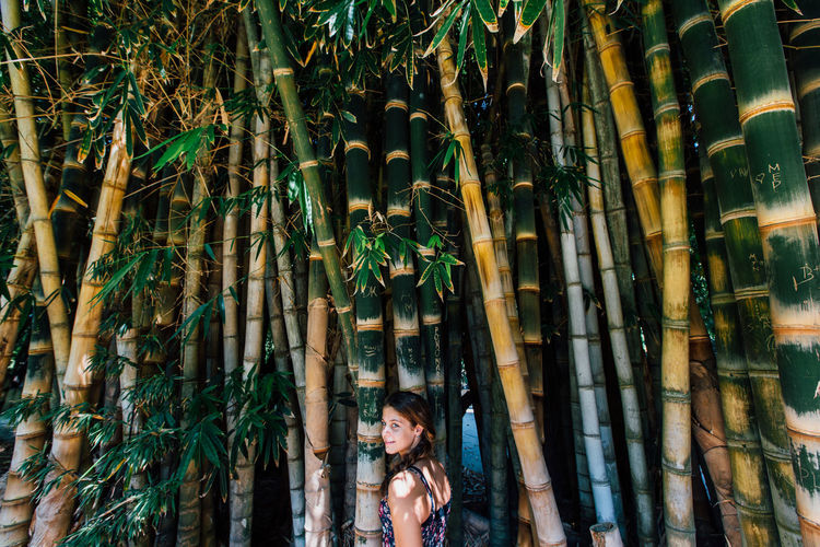 Bamboo Bamboo - Plant Plant Bamboo Tree Real People Growth Day Bamboo Grove Nature Forest Outdoors Leisure Activity Land One Person Woman Portrait Portrait Of A Woman Girl International Women's Day 2019